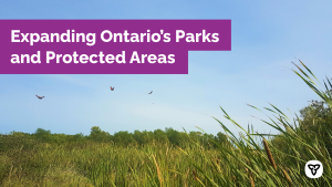 Ontario Begins Process to Create a New Conservation Reserve in Prince Edward County