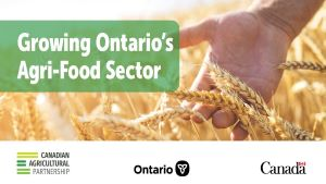 Governments Help Ontario Farmers Bring High-Quality Products to Market