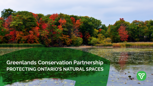 Ontario Expanding the Protection and Preservation of Green Spaces