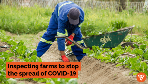 Ontario Expands COVID-19 Inspections to Farming Operations