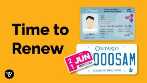 Ontario Reinstating Renewal Requirements for Driver's Licences, Licence Plate Stickers and Health Cards