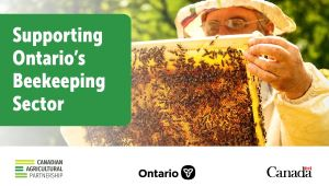 Governments Providing Additional Supports for Ontario Beekeepers