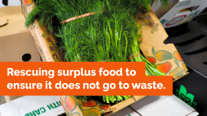 Ontario Takes Steps to Ensure Surplus Food Does Not Go to Waste