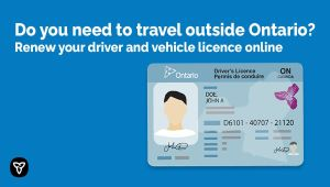 Ontario Making It Easier and Safer to Renew Driver's Licences