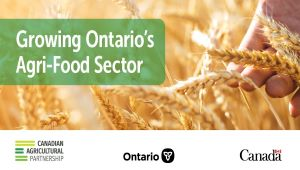 Governments supporting Ontario's beekeeping sector