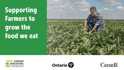 Canada and Ontario Supporting Farmers through Enhanced Insurance Protection
