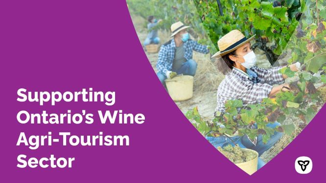 Ontario Supporting the Wine Agri-Tourism Sector