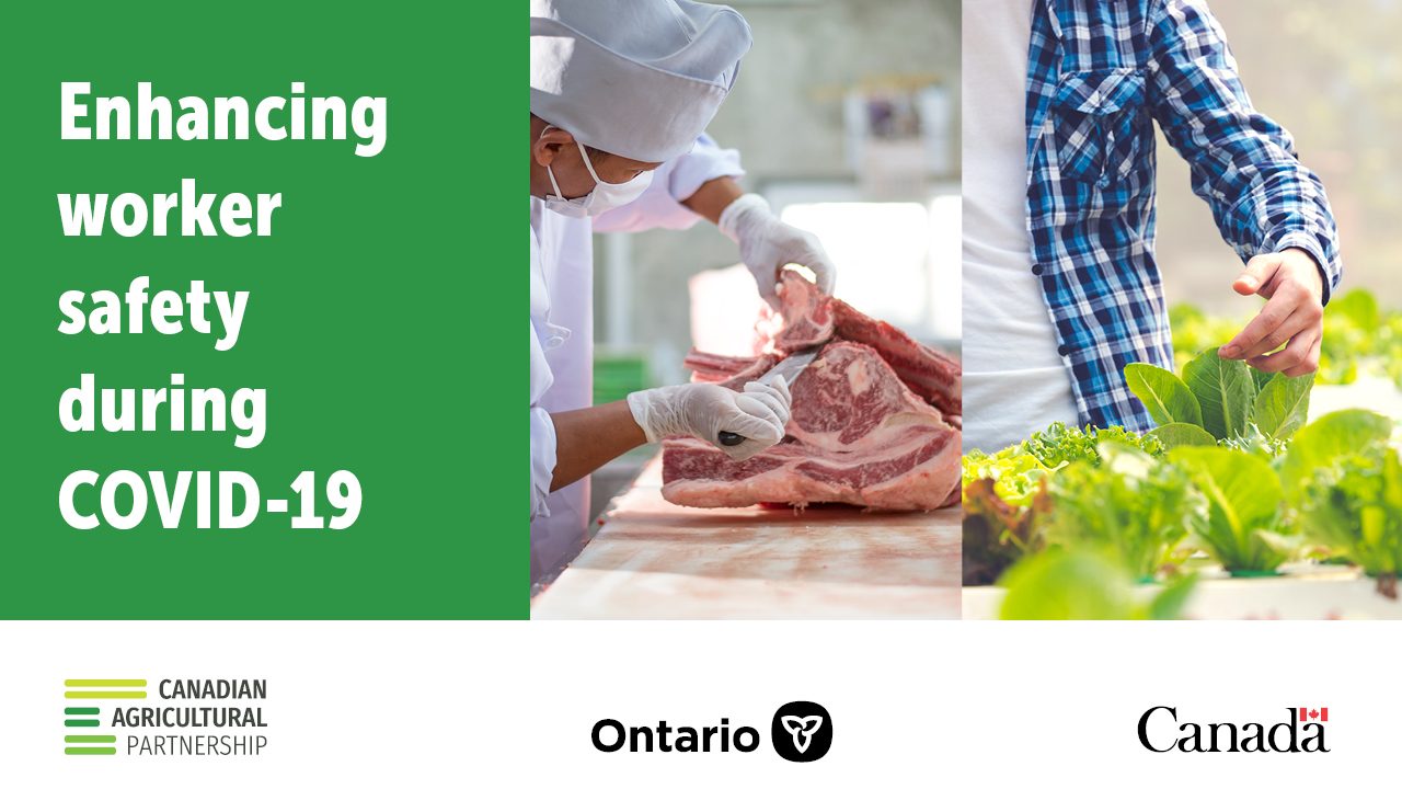 Canada and Ontario Take Additional Steps to Protect Agri-Food Workers During COVID-19