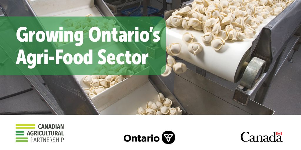 Governments Help Ontario Food Processors become more Innovative and Competitive